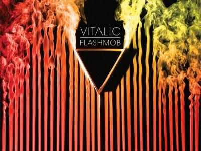 Vitalic - Flashmob