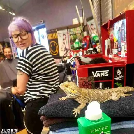 Traverse-City_mens-barber-shop-near-me_MI_Traverse-City_3480-W-South-Airport-Rd_