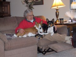 Judith Kirscht, author, at home with the dogs.