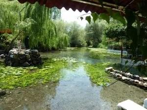 One of the springs of Lawazantiya enjoyed by Puduhepa