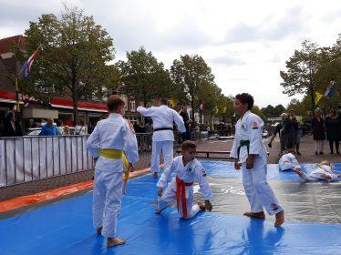 demo judo