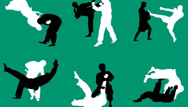 Jiujitsu binnen Judo Vianen