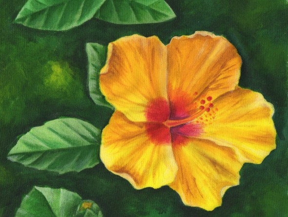 Painting Hawaiian Flora