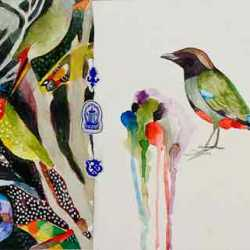 Hooded Pitta By Judy Holding, 200 X 640 Mm, Watercolour/collage On Paper, 2013