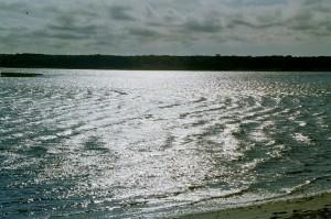 ripplewater