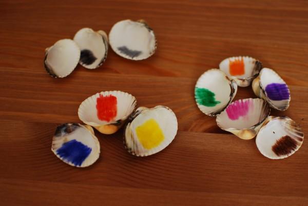 Kleuren leren met schelpen