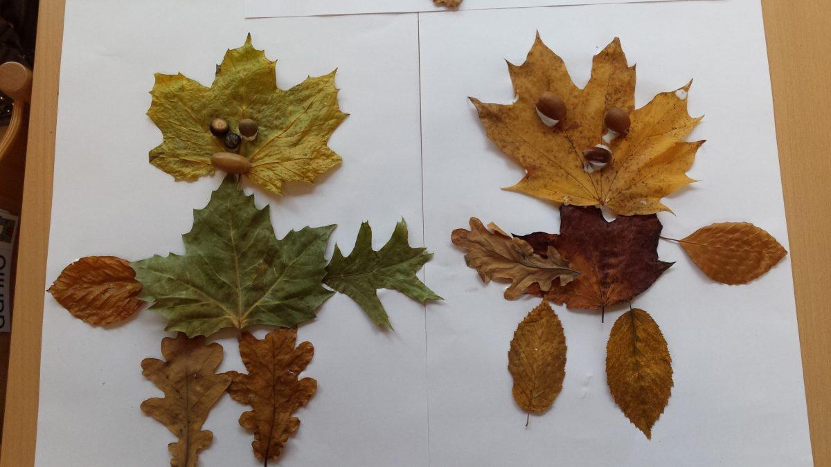 Bladermannetjes en bladervrouwtjes