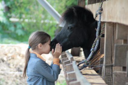 Vertrauen und Kommunikation mit Pferden