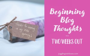 Blog Thoughts – Two Weeks Out