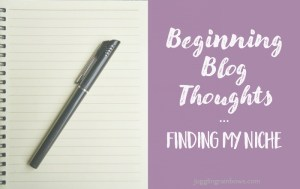 Blog Thoughts – Finding My Niche