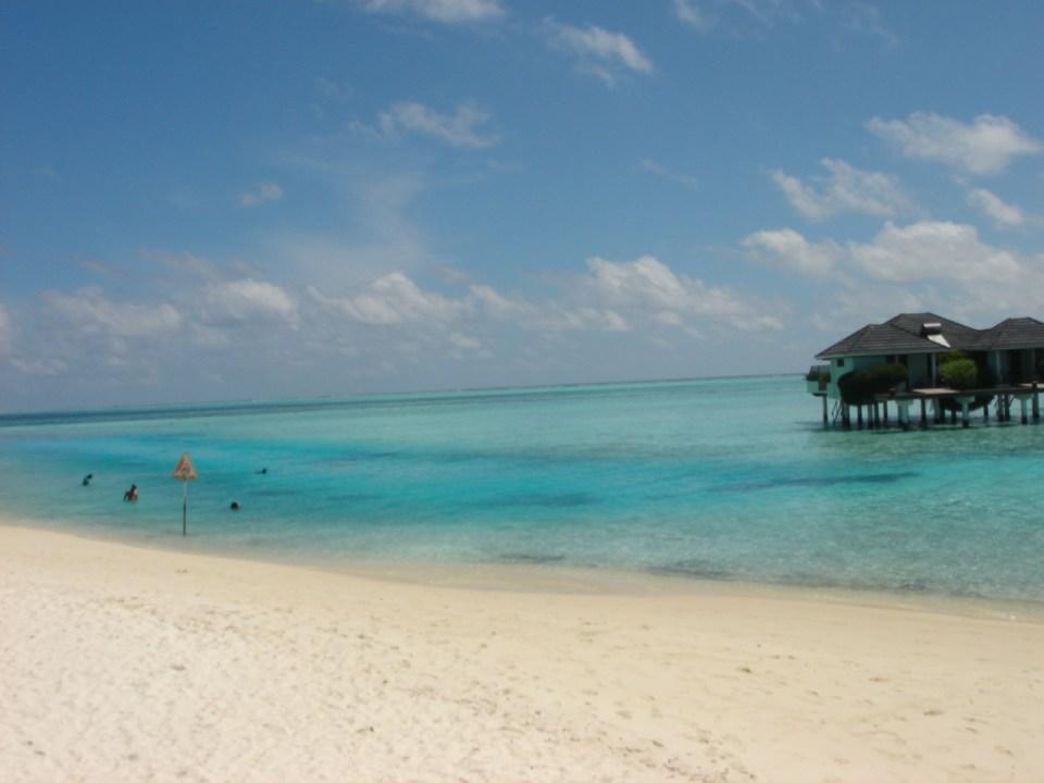 the pristine white beach @ Maldives