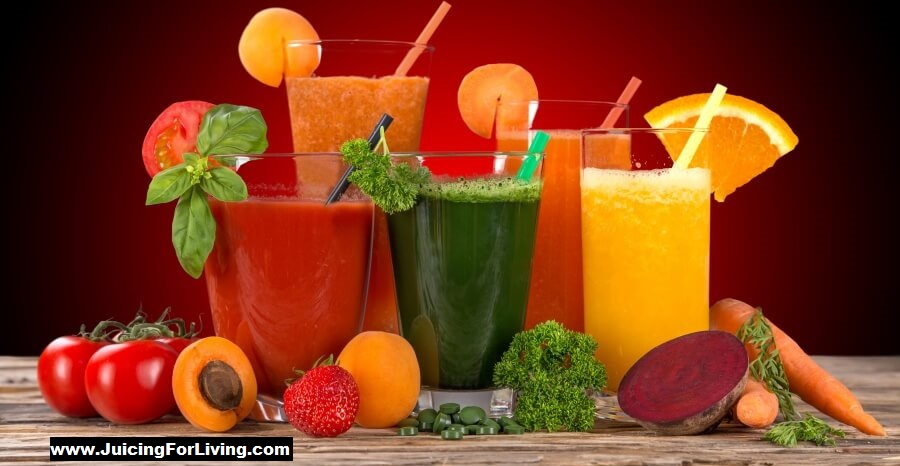 Top 7 Best Manual Juicers Reviews & Buying Guide 2019