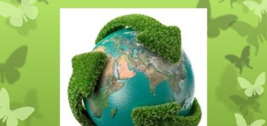 Derecho a un medio ambiente sano