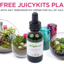 Free Succulents Plant Food at Juicykits.com During July