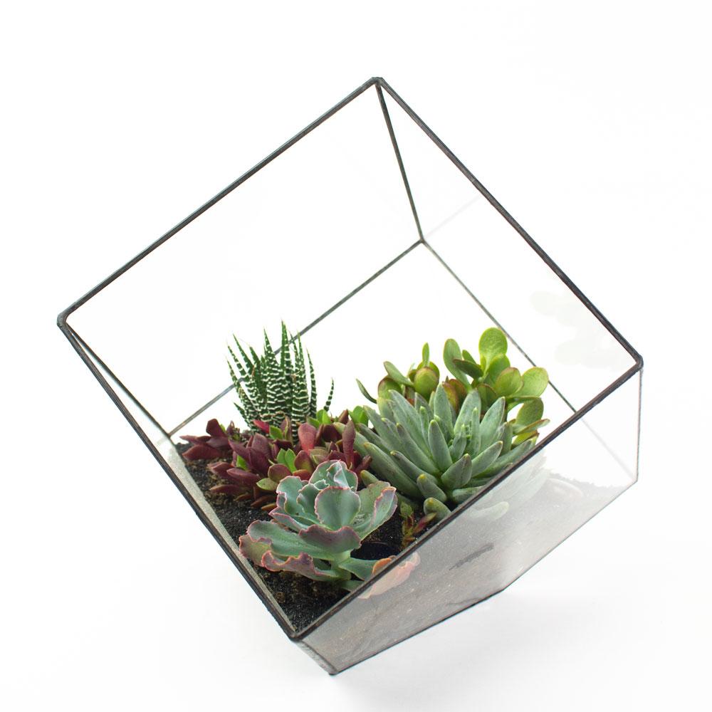 how to build a large terrarium