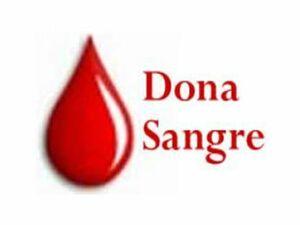 dona-sangre-11