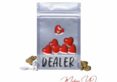 "Medusa YQ – ""Dealer"""