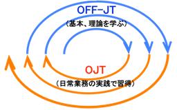 image_ojt