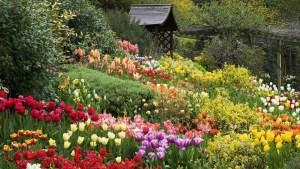English-garden-wallpaper-1