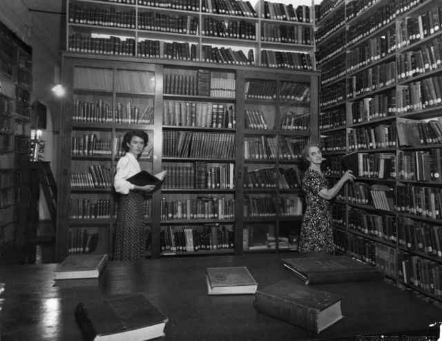 9. Bibliotecarias en la sección no ficción de la biblioteca