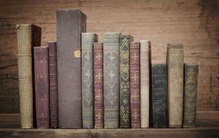 No sé qué tendrán los libros, pero son capaces de enamorarnos a primera vista