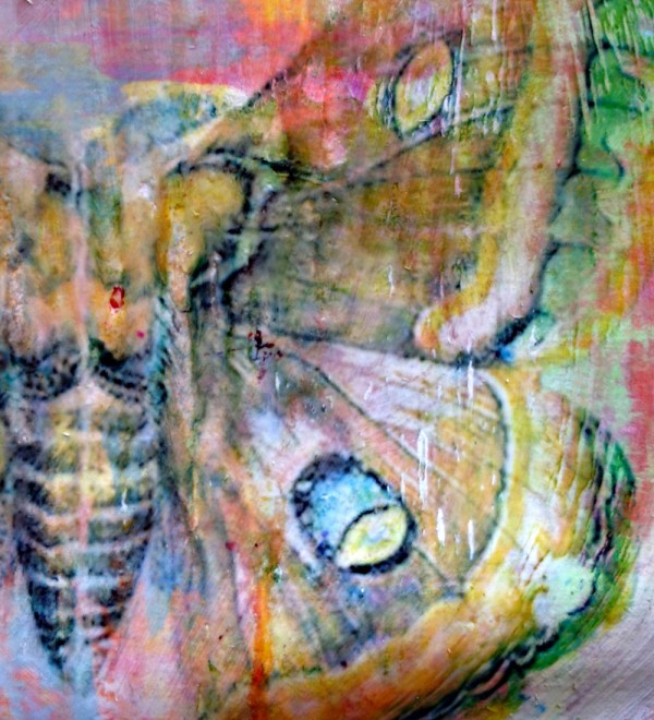 Butterfly Acrylic Transfer Detail