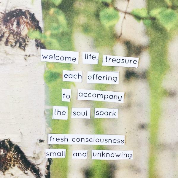 life treasure