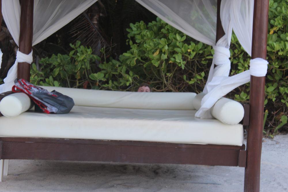 Bed by the ocean at Riviera Maya, Grand Palladium Resort, Riviera Maya, Mexico. Family travel location. Ecology focus. Iguanas and wildlife, gorgeous foliage and vegetation.