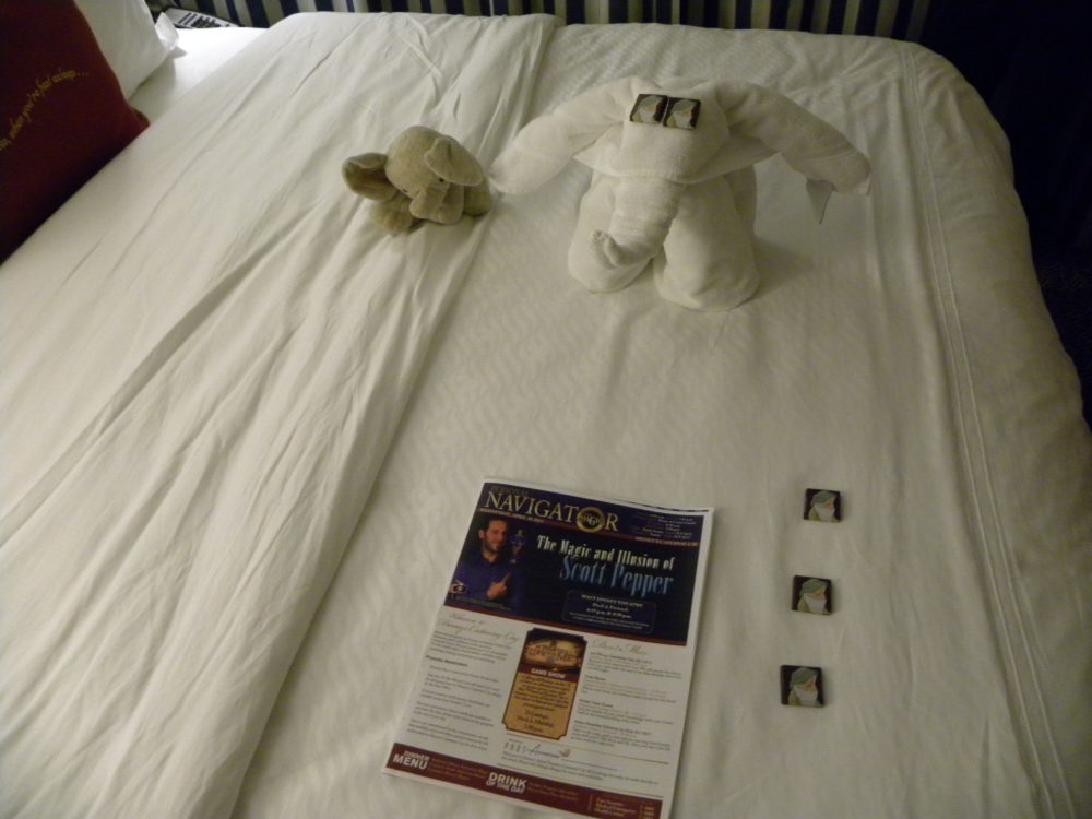 Towel elephant with Sleepy chocolates in stateroom