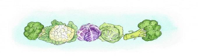 grønne salater | www.juliekarla.dk