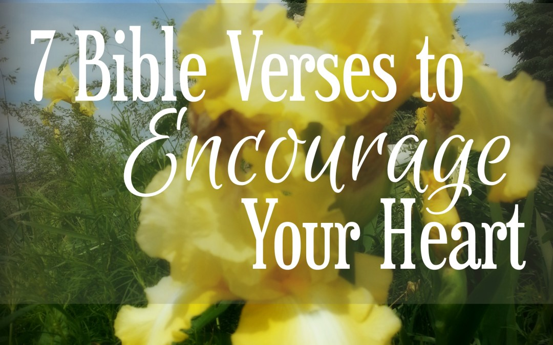 7 Bible Verses To Encourage Your Heart