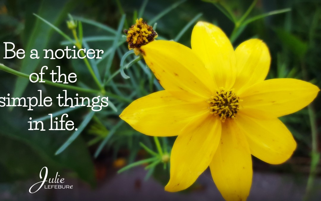 Be A Noticer Of The Simple Things In Life