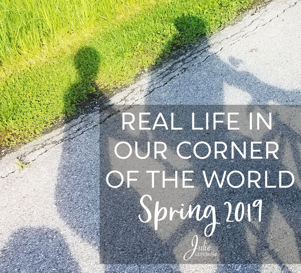 Real life in our corner of the world - Spring 2019