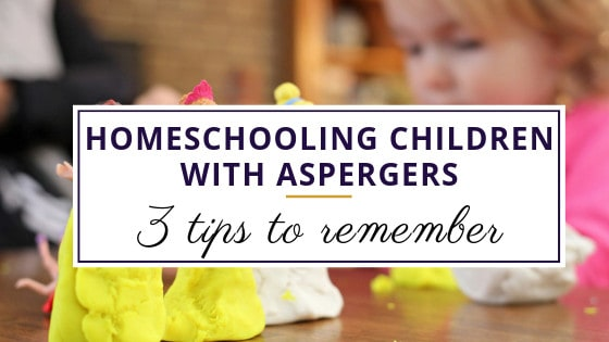 homeschooling a child with asperger's while she sculpts princess clothes out of playdough