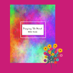 Rainbow SOAP Method Bible Study Journal (DIGITAL)