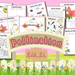 Pollination Printables Pack