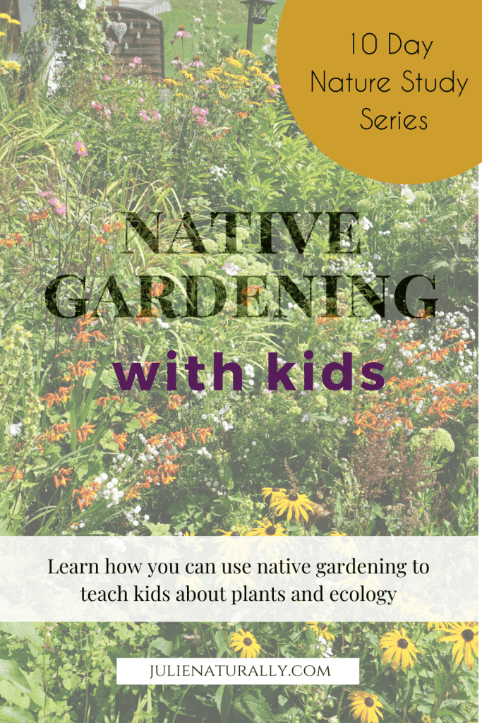 native garden with kids that includes black eyed susans, echinacea, and a variety of other native plants