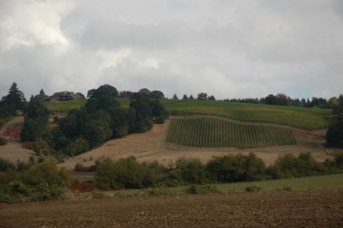 Domaine Belle-Pente