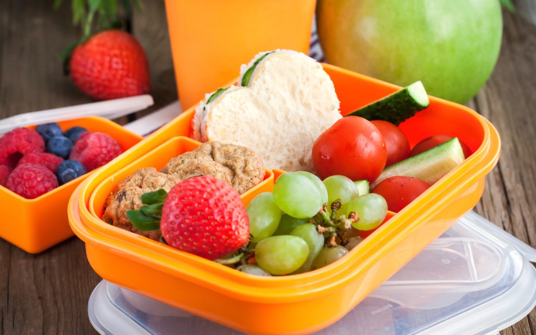 Easy and Fun Lunch Ideas for Kids