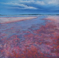 Julie Silvester - Salt Lake Surface - 97 x 97