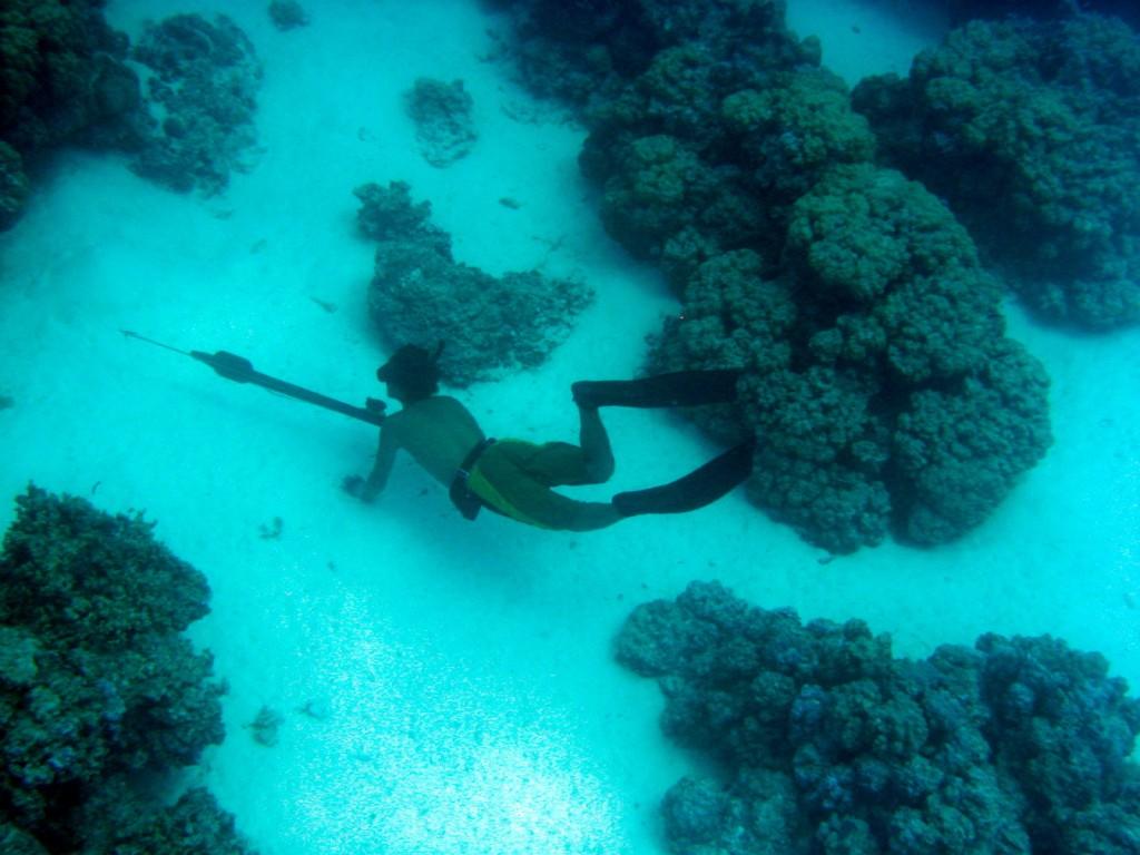 Bora Bora Dive 3