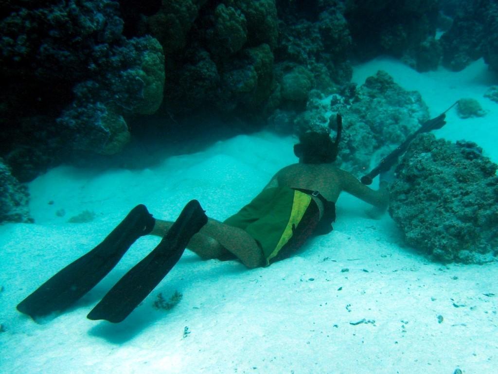 Bora Bora Dive 5