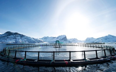 Fish farming in French Polynesia
