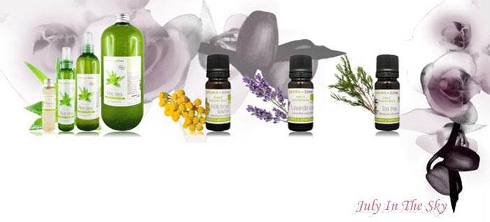blog beauté astuces naturelles soin peau boutons cicatrices huile essentielle arbre thé lavande vraie hélichryse italienne avis