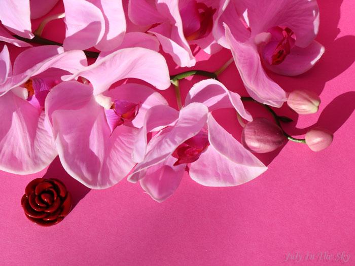 Du rose à mes lèvres avec le gloss Stylenanda 3C