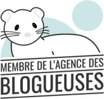 Blog beauté blogueuse agence des blogueuses