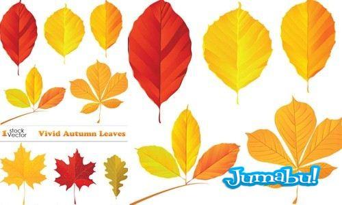 hojas otoño - Hojas Otoño en Vectores