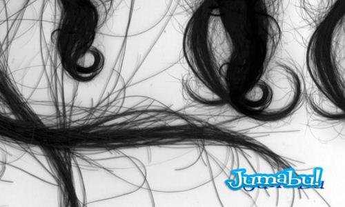 pinceles cabellos - Brushes Photoshop de Cabellos