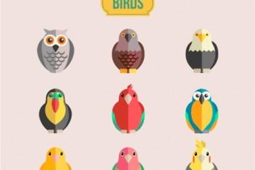 aves vectoriales gratuitas - Pájaros en Vectores con Efecto Plano