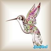 colibri-vectores []